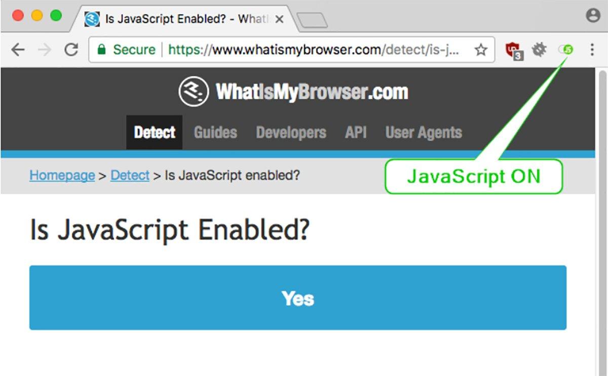 Enabling and Disabling JavaScript